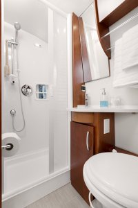 2017 Serenity Leisure Travel Van Class B Bathroom