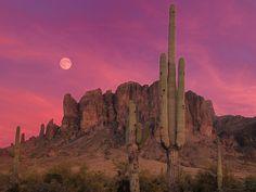 Mojave National Preserve sunset
